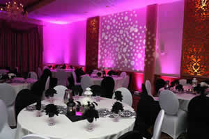 Rent Up Lights with FREE Shipping Nationwide for Weddings and ...