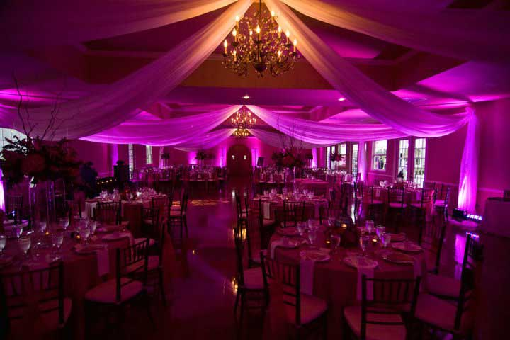 Photo gallery and reviews for rent my wedding nationwide wedding pink uplighting rent online at rentmywedding free shipping nationwide easy junglespirit